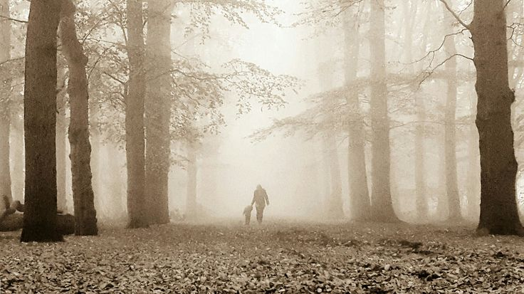 Mother and son in fog by Wilco van der Laan Fotografie on 500px