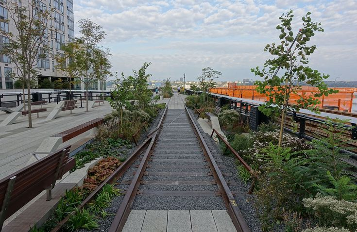 High Line foto. Landscape design  by Piet Oudolf