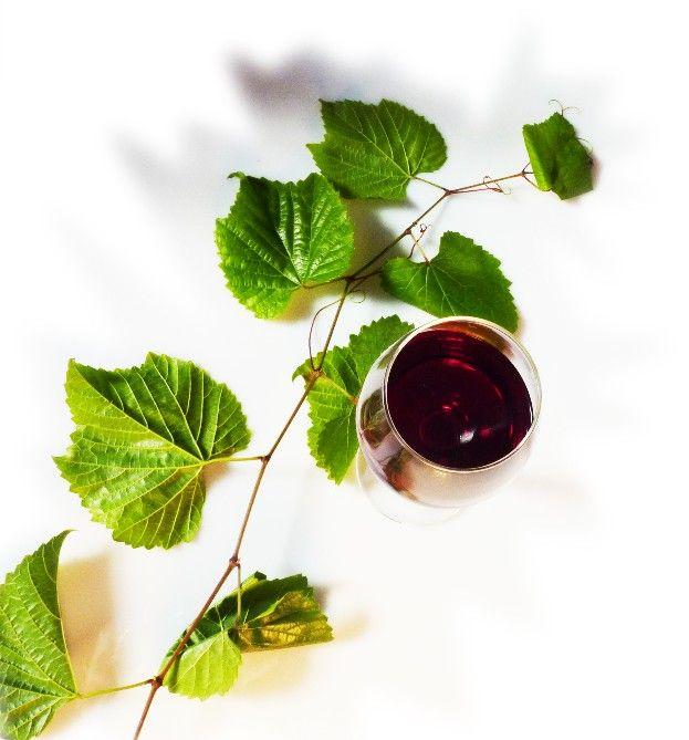 Azienda vitivinicola Nobili. Poggiridenti Piano, Sondrio.