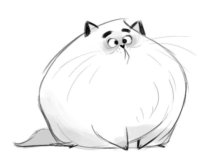 Открытки, кот смешной рисунки карандашом