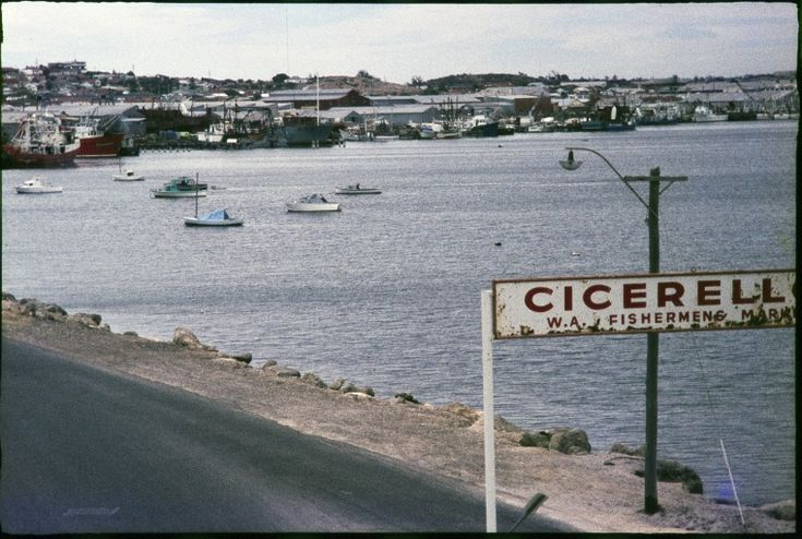 133637PD: Fremantle Fishing Boat Harbour, 19.2.1974.  http://encore.slwa.wa.gov.au/iii/encore/record/C__Rb2647374__S133622PD__Orightresult__U__X3?lang=eng&suite=def