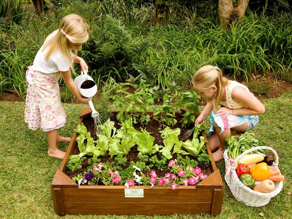 gardening gals camp get your kids growing their own vegetables with the just for kids veggie garden box