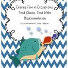 This resource will help you teach your middle school class how energy flows through an ecosystem using food webs and food chains and bioaccumulation