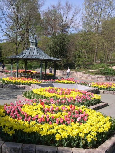 13 Best Images About Botanical Gardens On Pinterest