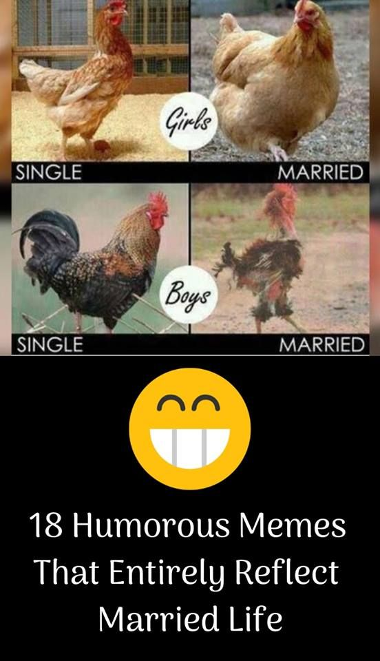 Before and after marriage rooster