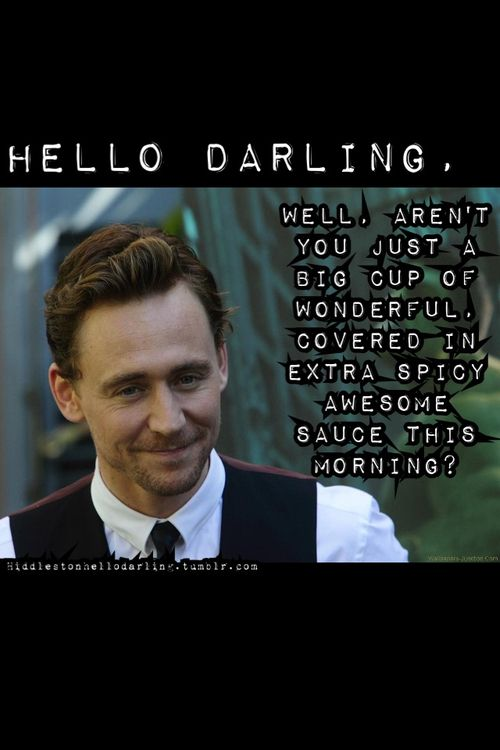 "Memes like this in the ""Hello Darling"" series make me wonder whether they're meant to be read as Tom saying them to us, or us saying this to Tom, because he definitely fits this description. ;)"