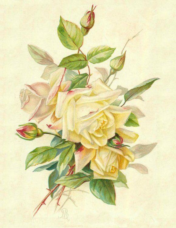Розы винтаж открытки, заготовки для