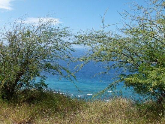 Hawaii era um sonho antigo e estava na minha bucket list de viagens fazia um tempo. Quando vi a promoção de passagens por R$1.100 não tive dúvidas e comprei a passagem no impulso.