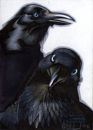 """In Norse mythology, Huginn (""""thought"""") & Muninn (""""memory"""") are a pair of ravens that fly all over the world, Midgard, to bring information to the god Odin. In the Poetic Edda, a disguised Odin expresses that he fears that they may not return from their daily flights. The Prose Edda explains that Odin is referred to as """"raven-god"""" due to his association with Huginn & Muninn, who are described as perching on his shoulders. Odin gave the ravens the ability to speak. Art by Richard Cox ❤❦♪♫"""