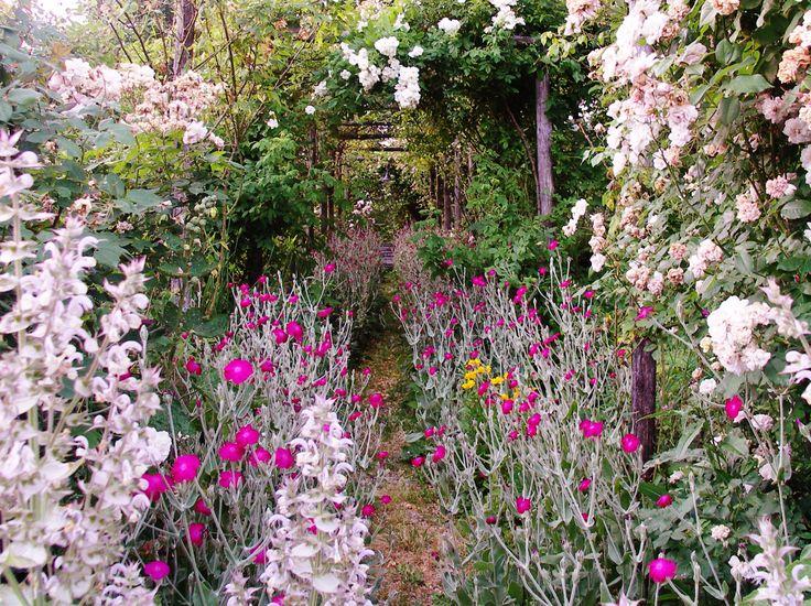 La Traversina  secret garden
