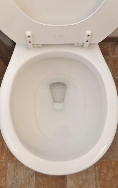 How to get rid of toilet rings! Great Cleaning Tip!