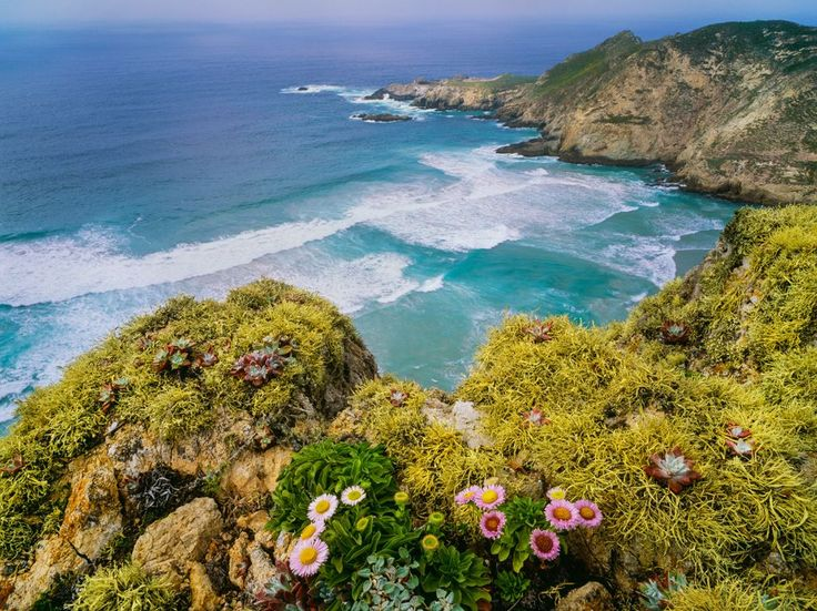 Picture of San Miguel Island in Channel Islands National Park, California