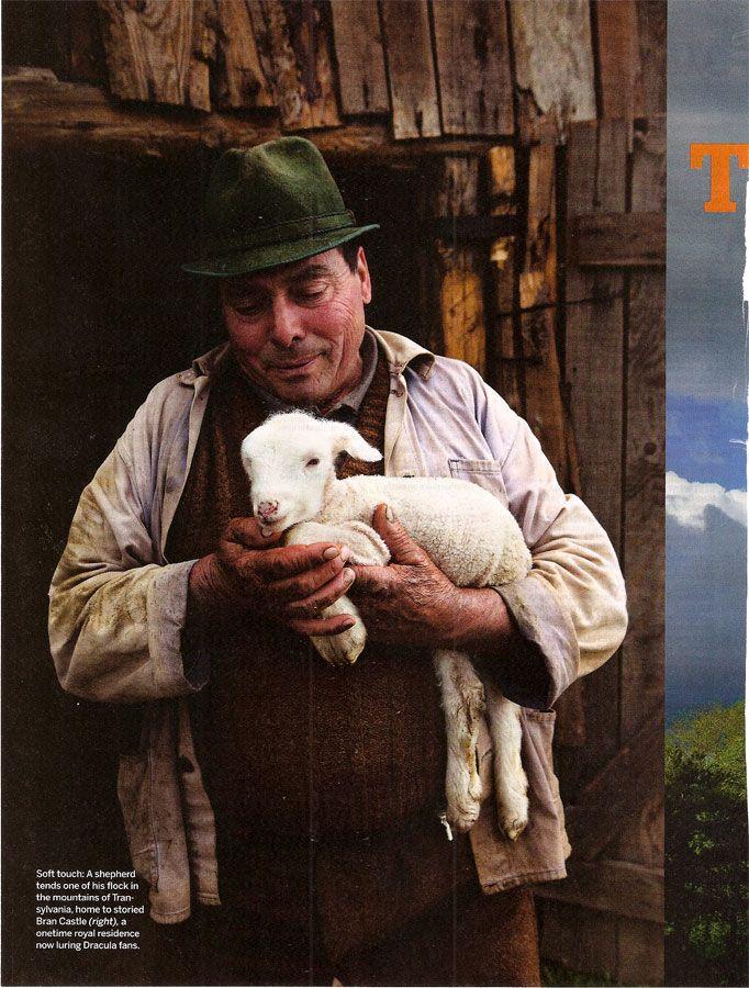 Miei din Transilvania