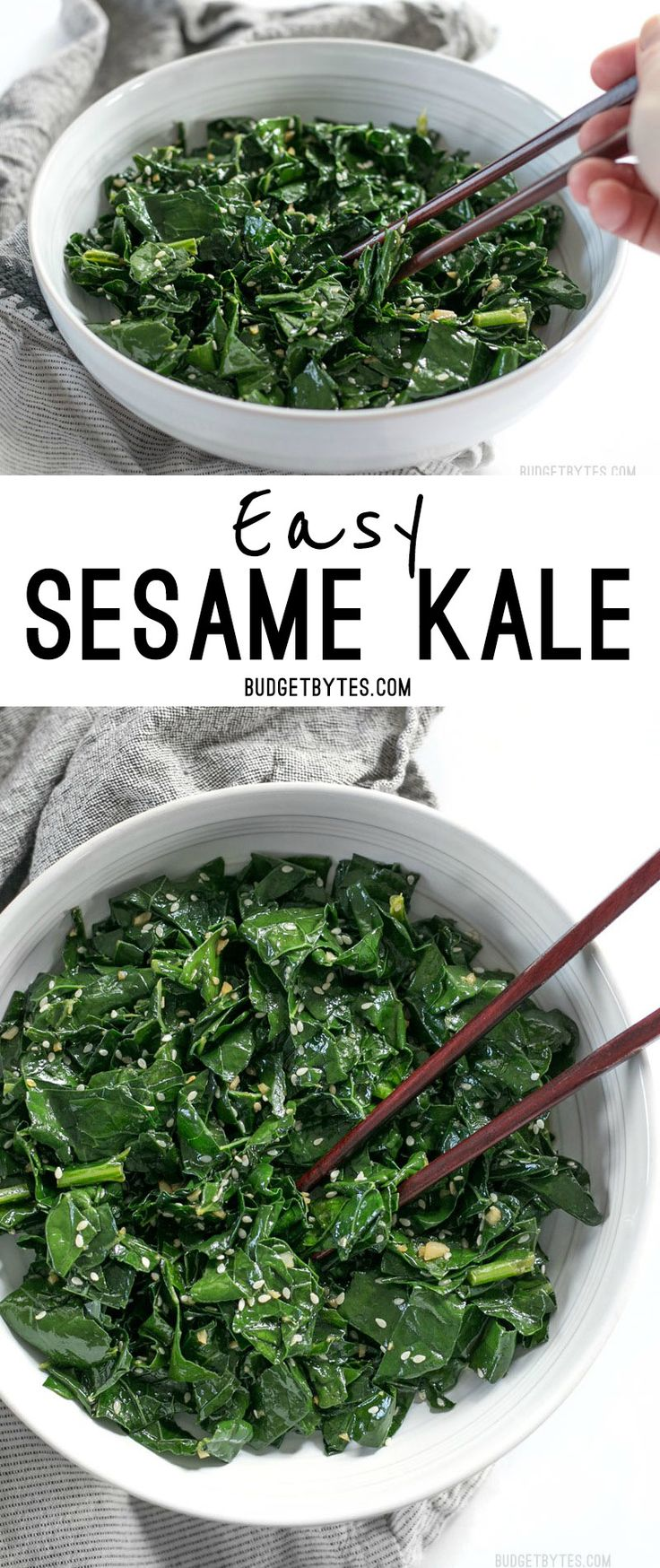 Sesame Kale is a quick and easy side dish that pairs perfectly with any Asian inspired meal. BudgetBytes.com