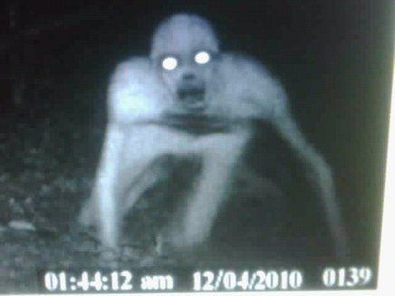 Deer Stand Camera Captures Strange Creature In Louisiana The Was Broken But Memory Card Remained And This Found