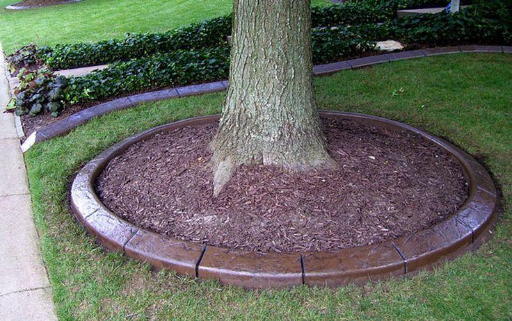 Landscape Pavers Edging : Paver edging concrete landscape pic
