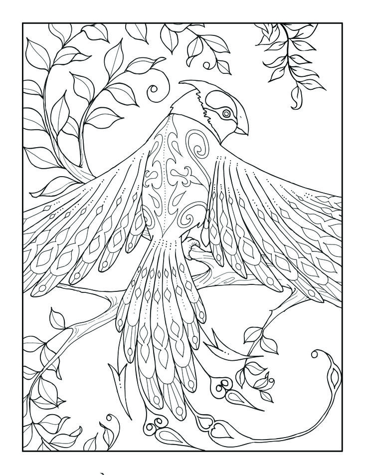 """From """"Magical Kingdom"""" Adult Coloring Book. Over 50 pages ..."""