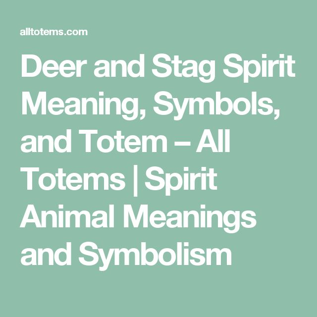 Deer and Stag Spirit Meaning, Symbols, and Totem – All Totems | Spirit Animal Meanings and Symbolism