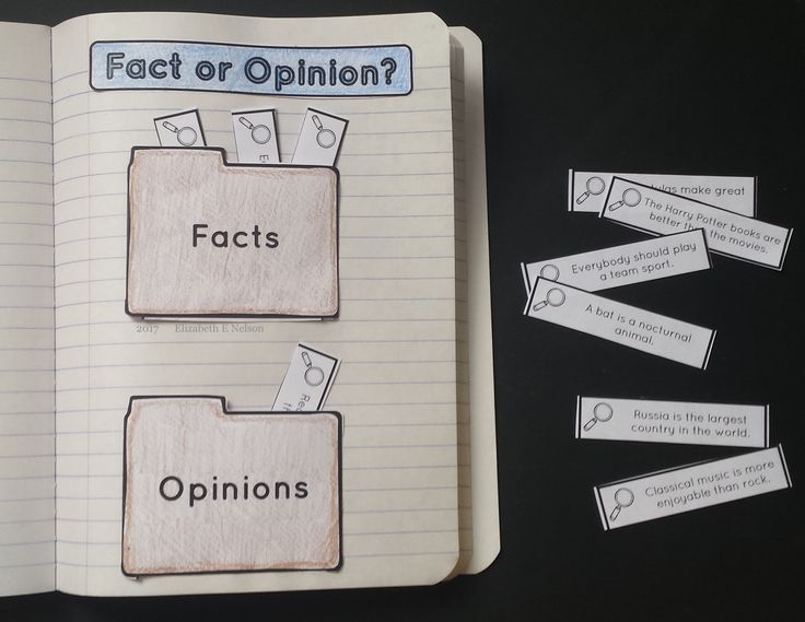 Fact vs, Opinion Sort: students sort fact and opinion statements in their interactive notebook