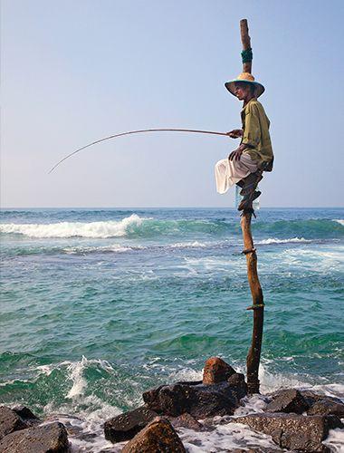 A fishing perch in Sri Lanka