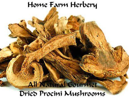 dried mushrooms - Google Search
