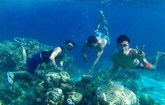 5 Fakta Menarik dari Pulau Karampuang