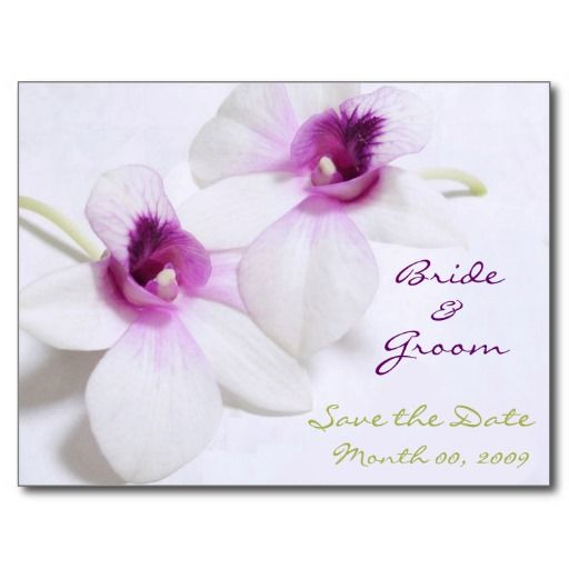 =>quality product          White Orchid Save the Date postcards           White Orchid Save the Date postcards in each seller & make purchase online for cheap. Choose the best price and best promotion as you thing Secure Checkout you can trust Buy bestThis Deals          White Orchid Save t...Cleck Hot Deals >>> http://www.zazzle.com/white_orchid_save_the_date_postcards-239427011071701589?rf=238627982471231924&zbar=1&tc=terrest