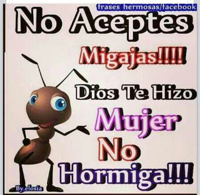 Dios te hizo mujer no hormiga. No aceptes migajas..