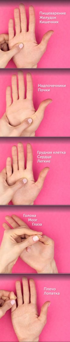 Точки на ладонях, которые управляют нашим организмом / Все для женщины