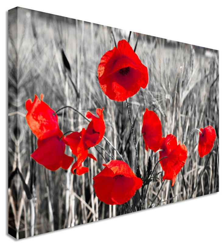 Poppy red black white flower canvas wall art pictures for home interiors