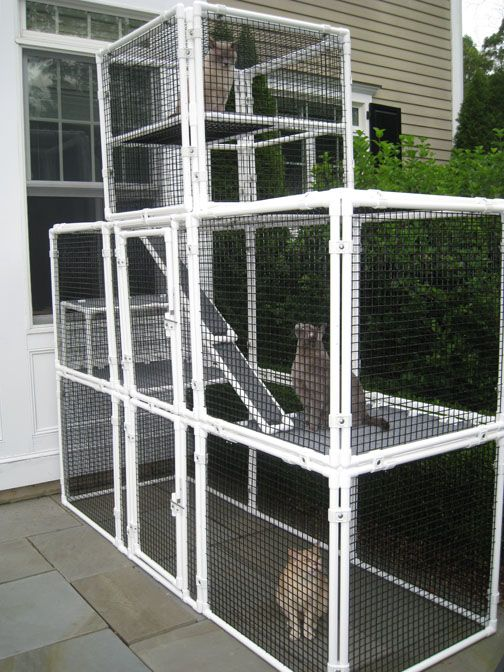 CatsOnDeck.com offers custom-built catios (or buy the pieces and build yourself).