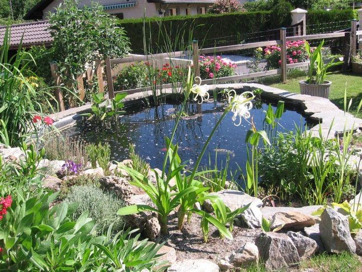 Plus de 1000 id es propos de bassin de jardin sur pinterest jardins tangs d 39 arri re cour - Idee amenagement bassin de jardin la rochelle ...