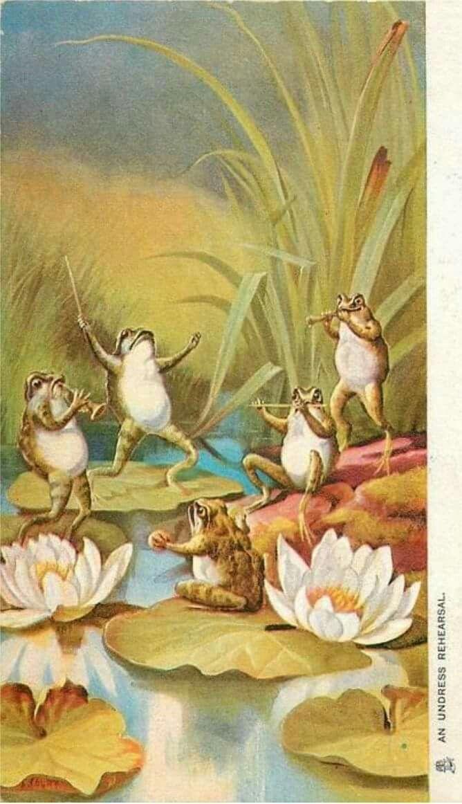 Картинки мышка и лягушка