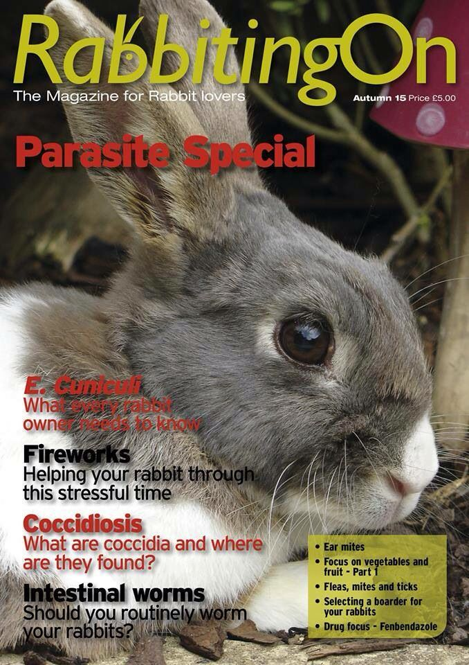 Love rabbits? Then you will love our magazine 'Rabbiting On'. Sign up now! http://shop.rabbitwelfare.co.uk/product-category/memberships/new-members/