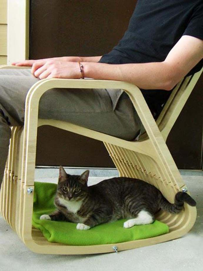 A chair for 2: Rocking Chair and Dog/Cat House