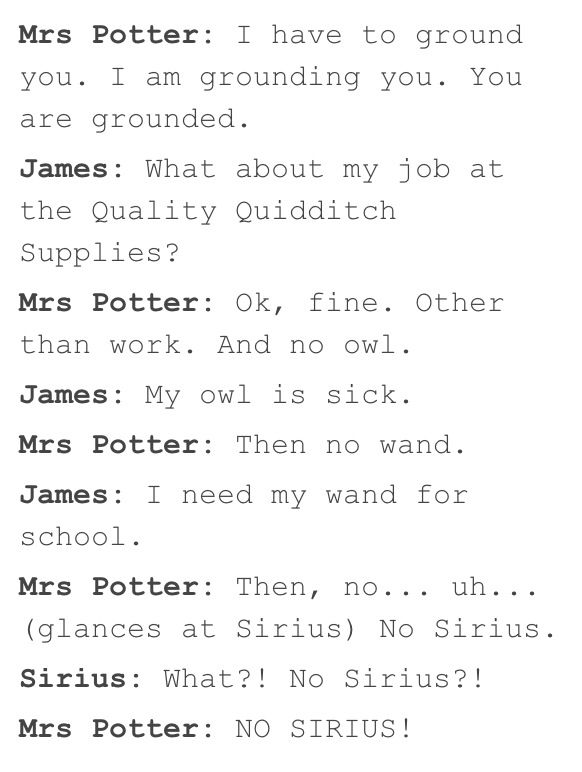 james potter and his mum