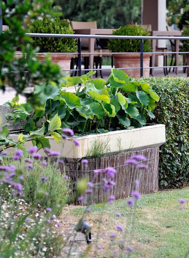 32 best Bassins fontaines cascades jeux du0027eau images on Pinterest