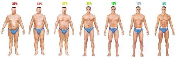 Body Fat Percentage Photos of Men & Women - BuiltLean