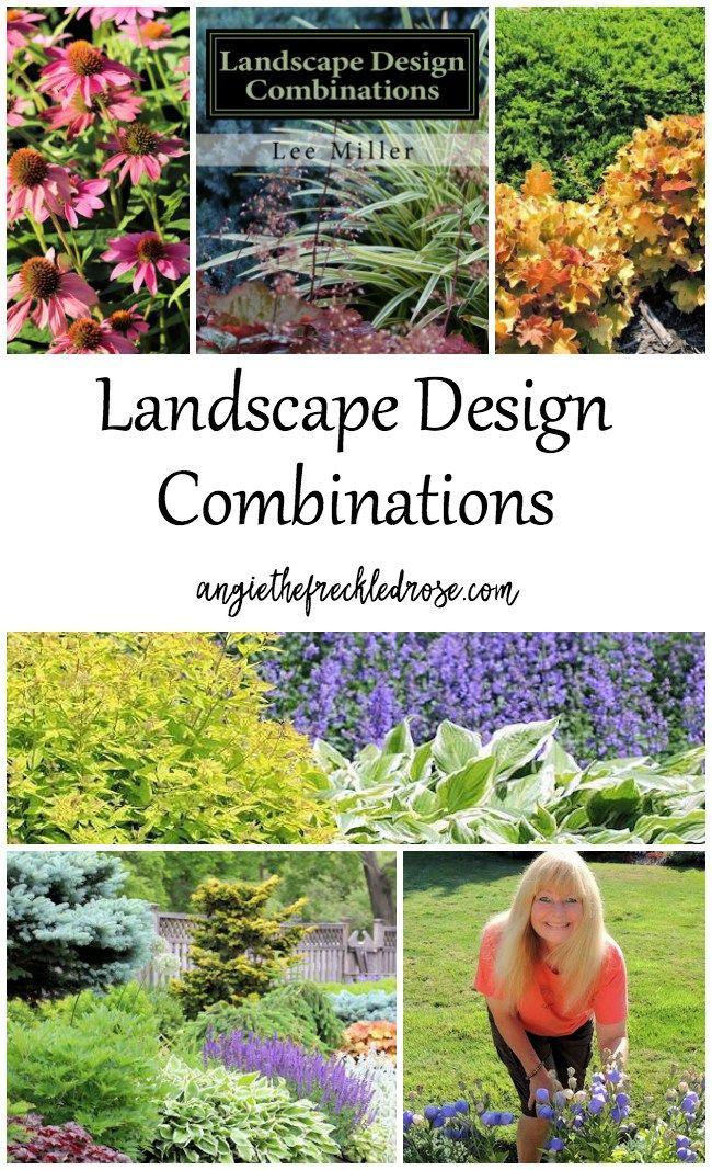 A Book Review: Landscape Design Combinations   esigning and planning out a garden can be a challenging task. Sometimes just knowing where to start can be a struggle. If you are anything like me, there is the perfect guide for you. Landscape Design Combinations by Lee Miller is that garden compass you have been looking for. @NEGardening