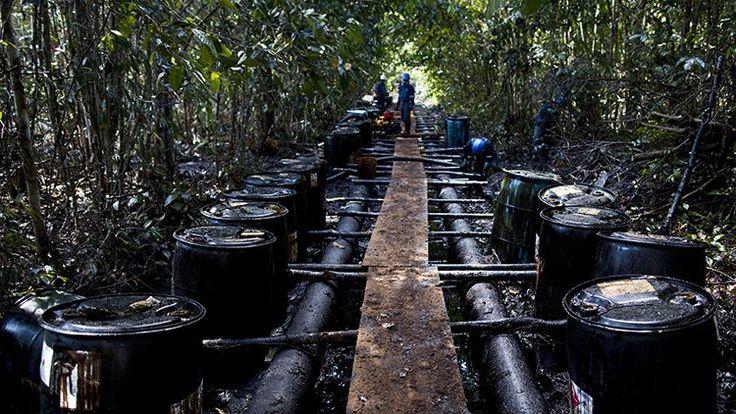 La Amazonia colombiana, amenazada por la industria petrolera - RT