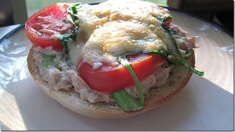 Bagel Tuna Melt with Greek Yogurt and 10 other recipes for one person - MyNaturalFamily.com #recipe