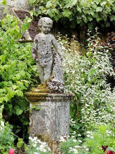 English Garden Hare. See More. The Velvet Boxwood