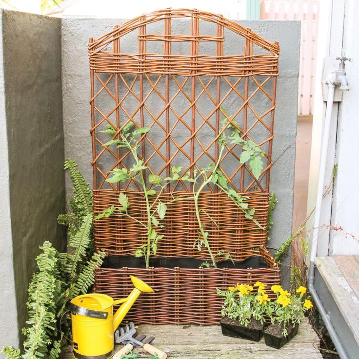 Grow some climbing plants with this beautiful Willow Trellis Garden Planter.