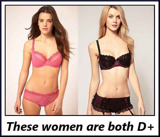 What are cup sizes? Did you know that D Cup boobs is the same volume of A Cups? - GirlsAskGuys