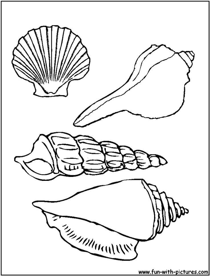 Seashells Coloring Page Of Pretty Sea Shells