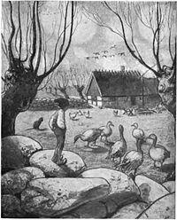 Illustration av John Bauer.