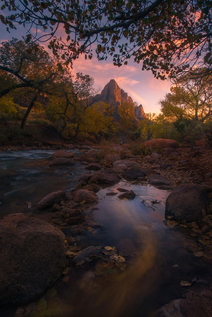 I lost my wallet this evening but hey got a nice fall sunset at Zion National Park [OC][1335x2000]