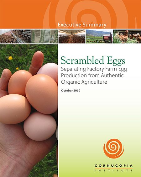 The Cornucopia Institute report, Scrambled Eggs: Separating Factory Farm Egg Production from Authentic Organic Agriculture. www.cornucopia.or... This report will empower consumers and wholesale buyers who want to invest their food dollars to protect hard-working family farmers that are in danger of being forced off the land by a landslide of eggs from factory farms. #Eggs #OrganicEggs #Scorecard #Report #Food#Farmers