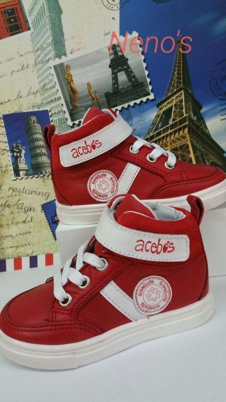 Zapato Acebos