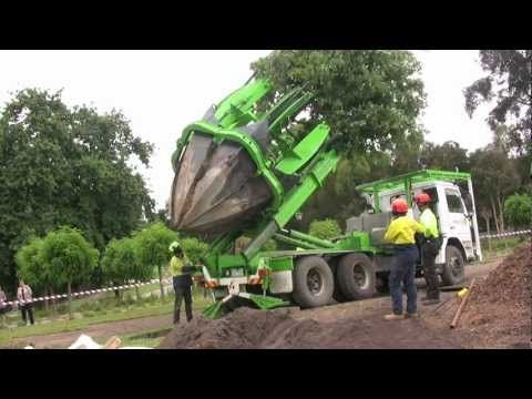 Arbor Co is Australia's most Professional Tree Care company, based in Melbourne, in the far south east of Australia. We are professional Arborists, specializ...